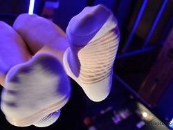 Goddess feet in white socks closeups